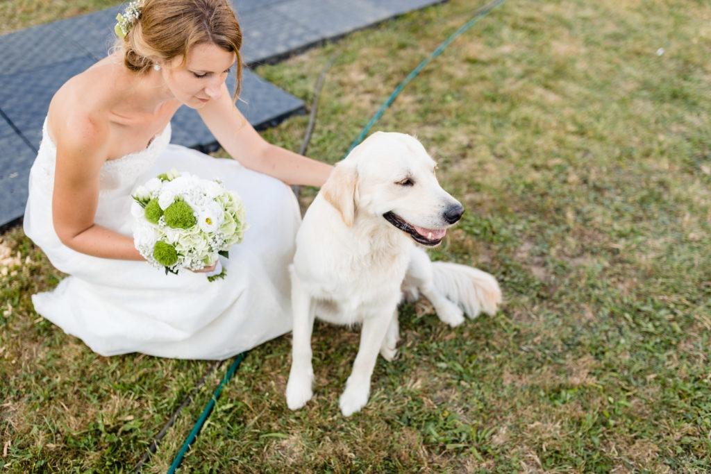 Die Braut streichelt einen Hund - Hochzeitsfotografie Fürstenfeldbruck